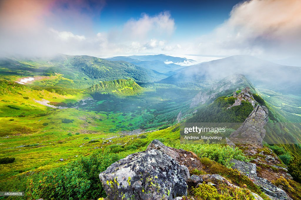 Colorful summer sunrise in the foggy Carpathian mountains. : Stock Photo