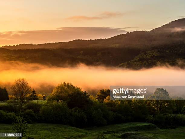 colorful sunrise in vosges mountains. fog and forest silhouettes. alsace. france. - lorraine stock pictures, royalty-free photos & images