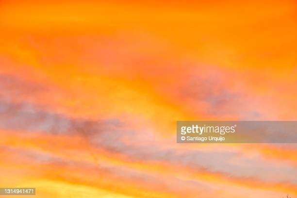 colorful sunset in brussels - romantic sunset stock pictures, royalty-free photos & images