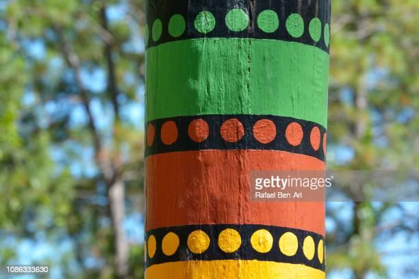 colorful tree trunk aboriginal pattern - rafael ben ari stockfoto's en -beelden