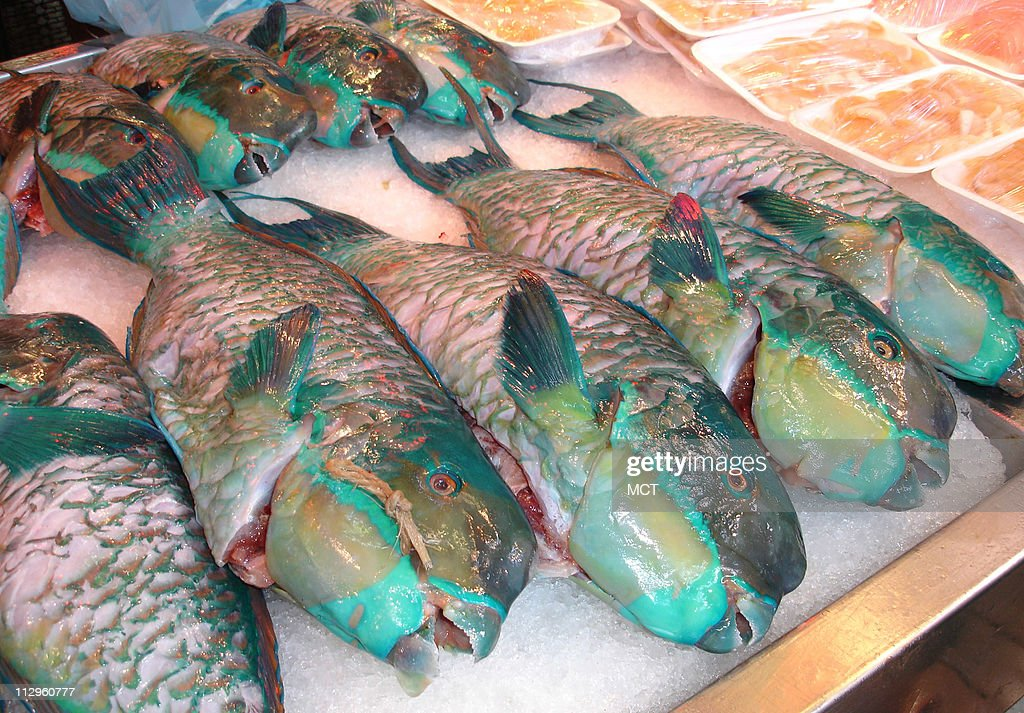 Colorful tropical fish for sale at the fish market in Papeete in