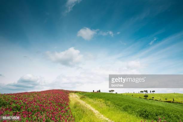 Bunte Toskana Landschaft