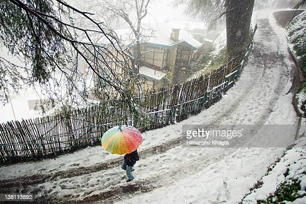 colorful umbrella in snow - shimla stock pictures, royalty-free photos & images