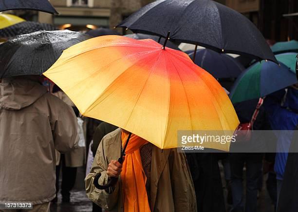 Colorful umbrellas in the rain