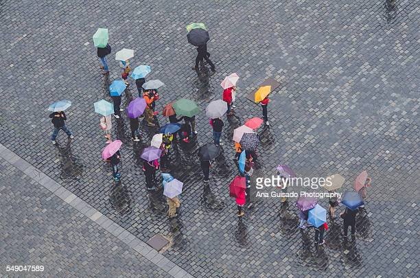 Colorful umbrellas seen from above, on a rainy day