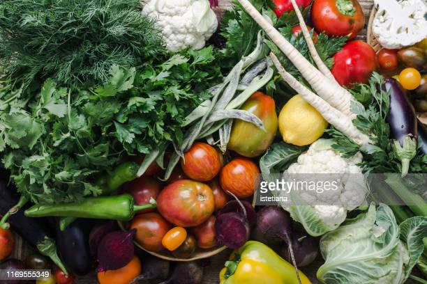 colorful variety, plant based food, homegrown crop - aliments et boissons photos et images de collection