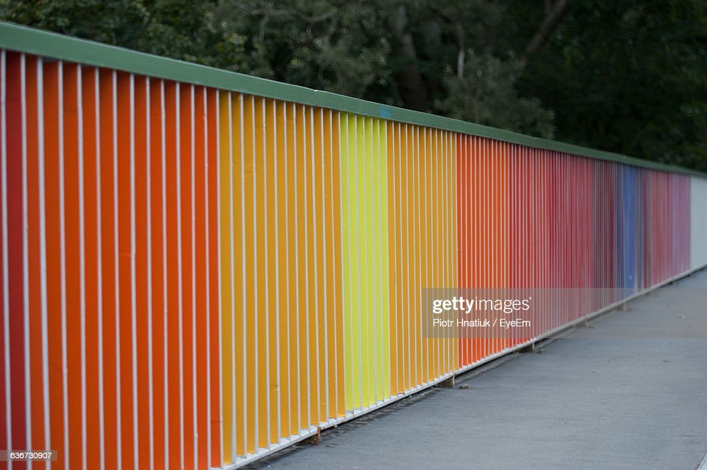 Colorful Wall On Sidewalk Against Trees : ストックフォト