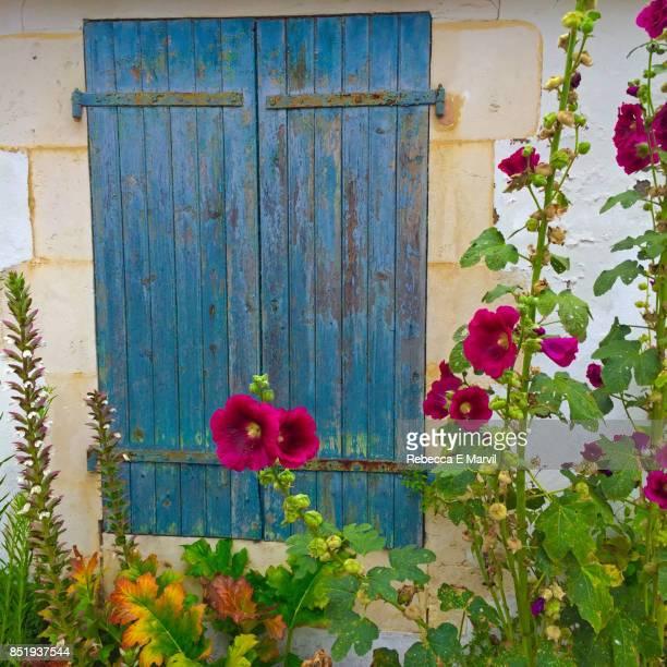 Colorful window in St. Martin-de-Ré, France