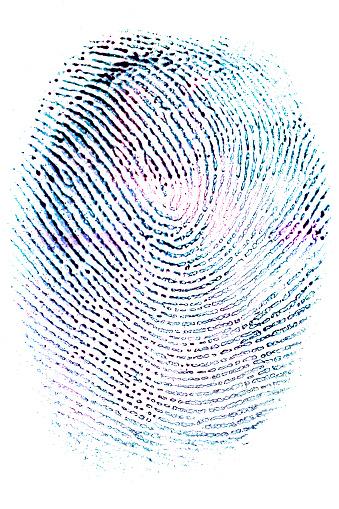 Colorised fingerprint on white paper - gettyimageskorea