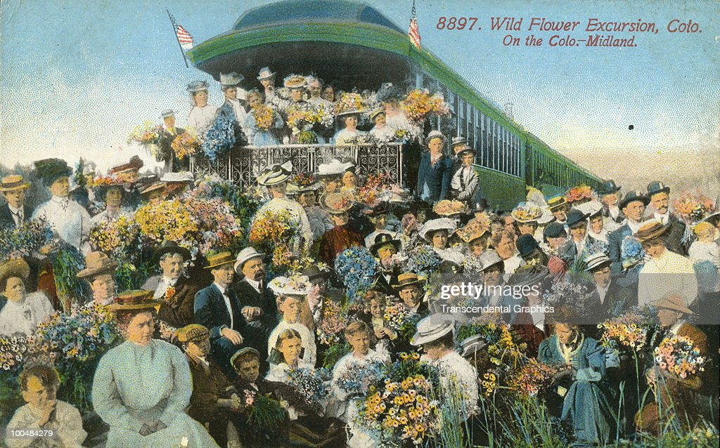 Colorized photo postcard shows a large crowd of men and women, many with bouquets, as they pose on and in front of a train for the 'Wild Flower Excursion,' Colorado, 1910.