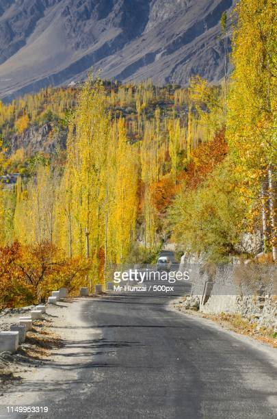 colors of autumn - hunza valley stock pictures, royalty-free photos & images
