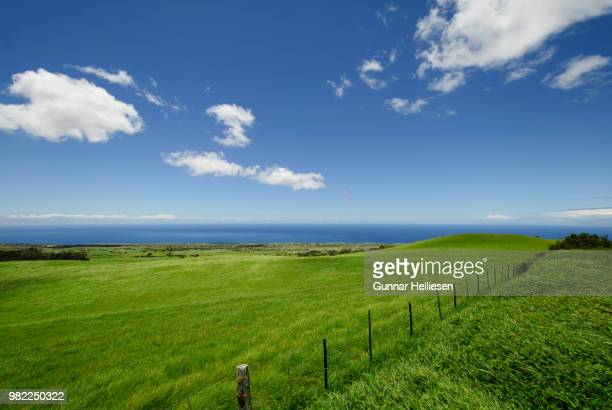colors of hawai'i - gunnar helliesen stock pictures, royalty-free photos & images