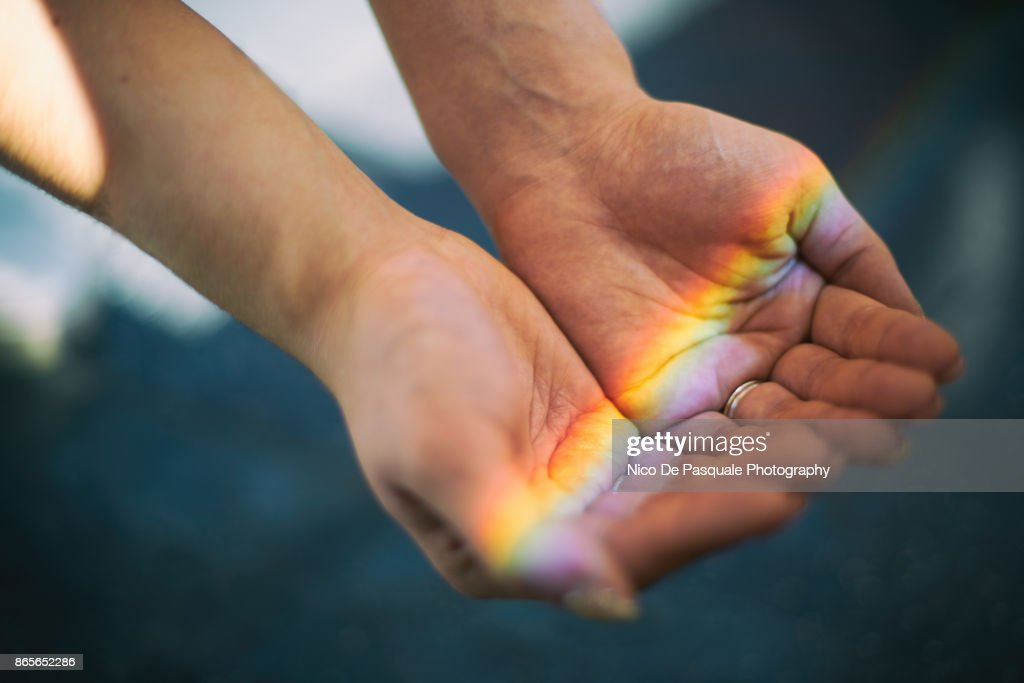 Colors of Life : Stock Photo