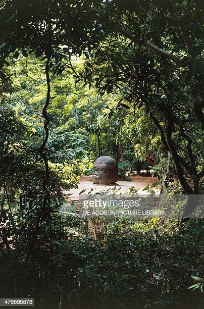 Colossal head La Venta Tabasco Mexico Olmec civilisation