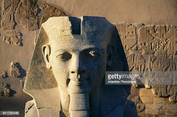 colossal head of ramesses at temple of luxor - rameses ii stock photos and pictures