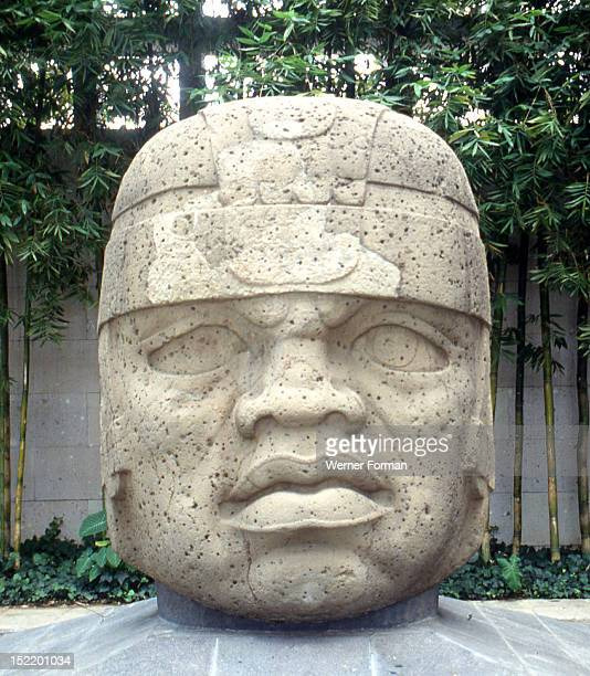 Colossal Olmec head from the site of San Lorenzo now displayed at the Jalapa Museum Veracruz Mexico Such heads often weighing many tons are thought...