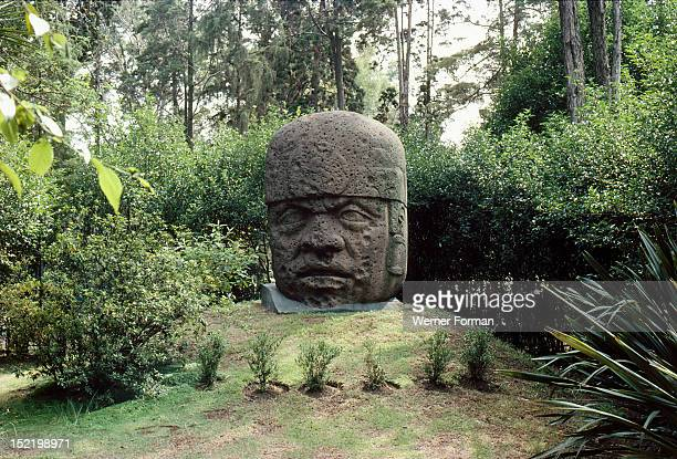 Colossal Olmec head Such heads often weighing many tons are thought to represent individual rulers possibly deified and worshipped as ancestors...