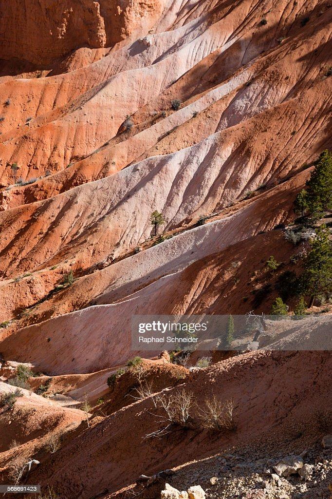 Colouful eroding slopes in Bryce Canyon, Utah : Stock Photo
