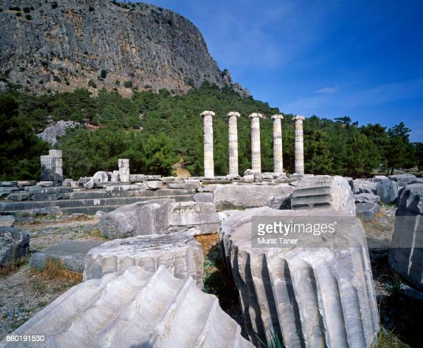 Coloumns of the Temple of Athena