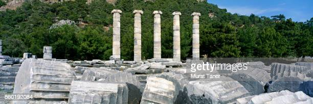 coloumns of the temple of athena - priene stock photos and pictures