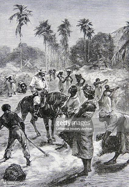 Coloured labour picking and sorting cotton on a plantation taking orders from a mounted plantation overseer Mississippi USA Engraving Leipzig 1895