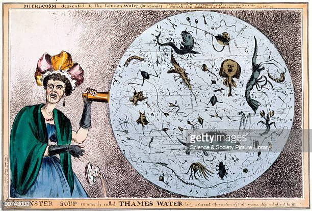 Coloured satirical engraving by William Heath also know by his pseudonym Paul Pry showing a lady discovering the quality of the Thames water The top...