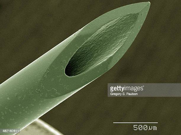 coloured sem of syringe - scanning electron microscope stock pictures, royalty-free photos & images