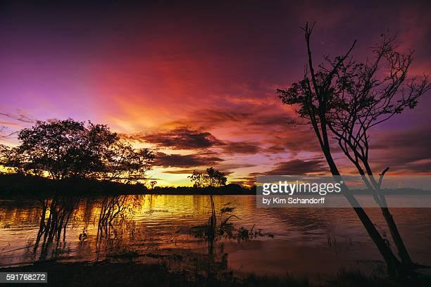 Colourful Amazon sunset