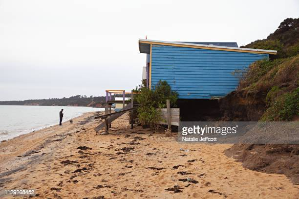 colourful beach boxes along the mornington penninsula in victoria australia - shack stock pictures, royalty-free photos & images