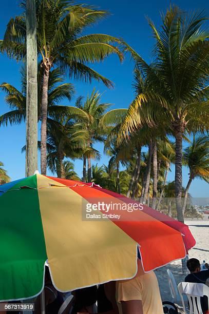 colourful beach umbrella and palm trees, mexico - mujeres fotos stockfoto's en -beelden