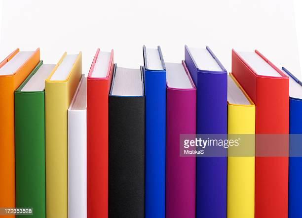 Colorido Estante de Livro