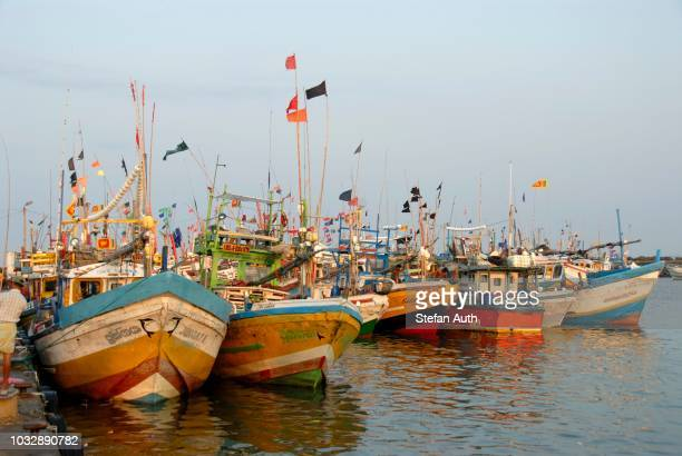 colourful fishing boats in front of dondra harbour, indian ocean, ceylon, sri lanka, south asia - lanka stock pictures, royalty-free photos & images