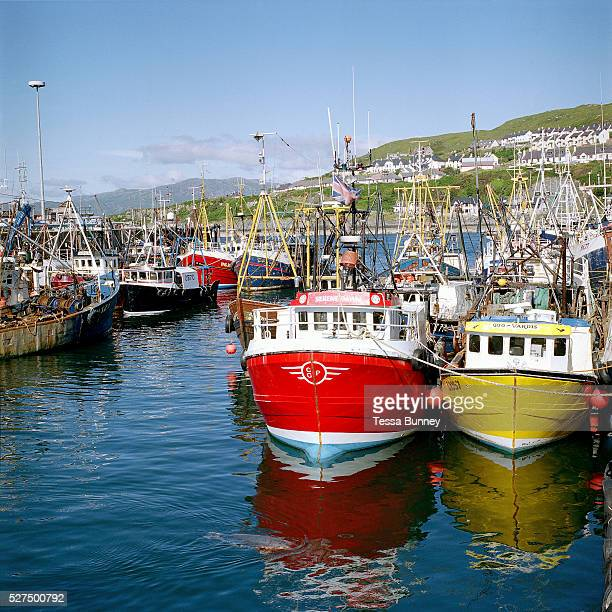 Colourful fishing boats in Mallaig harbour Scotland UK Mallaig has always been synonymous with fishing particularly with the west of Scotland herring...