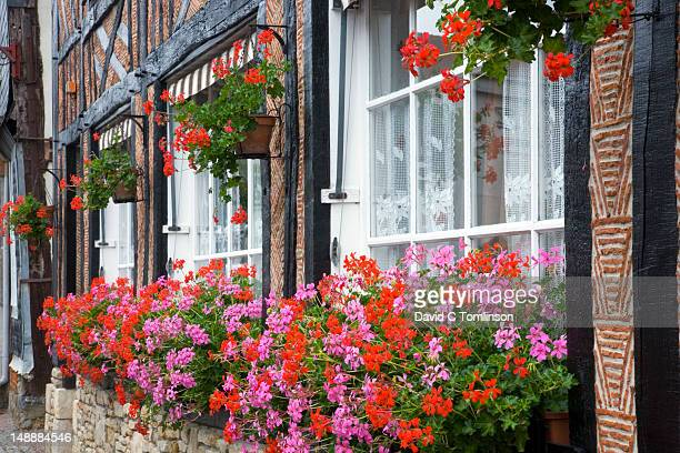 Colourful flowers adorning village house.