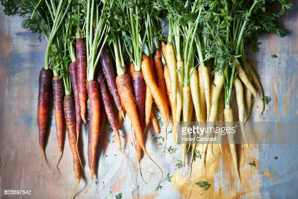 colourful heritage carrots - carrot stock pictures, royalty-free photos & images