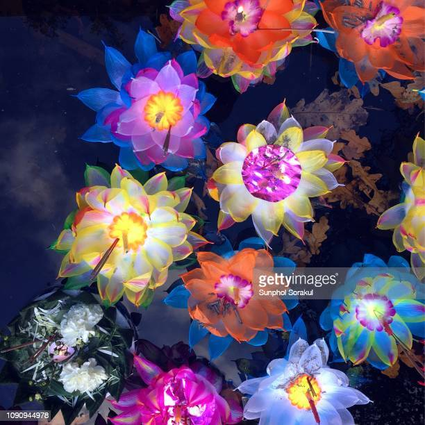 colourful krathongs floating on water - loi krathong stock photos and pictures