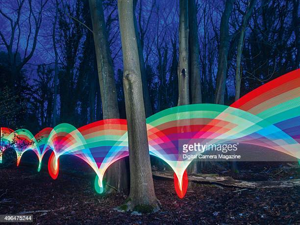Colourful light trails winding through a forest at twilight taken on January 28 2014