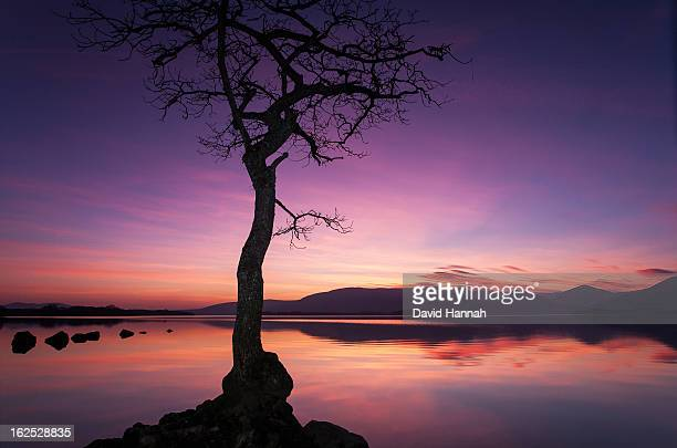 colourful sunset on loch lomond scotland - stirling stock pictures, royalty-free photos & images