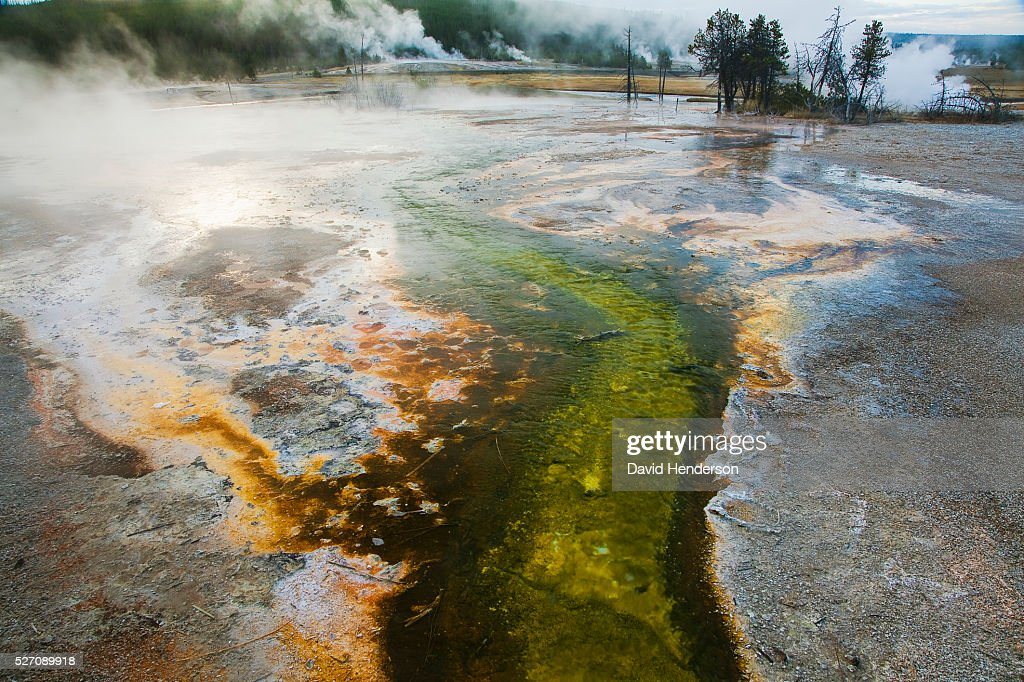 Colourful volcanic pool, Wyoming, USA : Stock Photo
