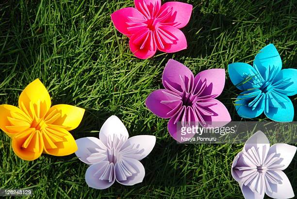 Colourfull paper flowers on grass