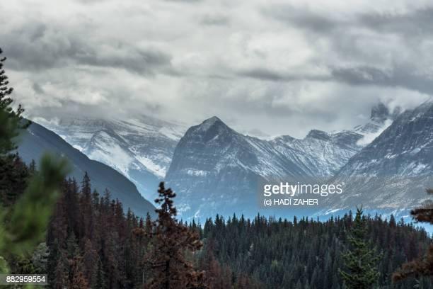 Colours of Autumn | Jasper National Park | Alberta | Canada
