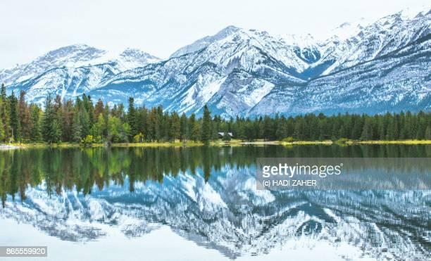 Colours of Autumn   Jasper National Park   Canada