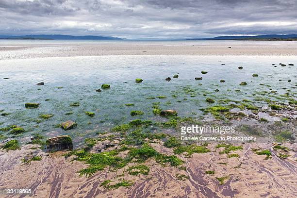 Colours of Ettrick bay