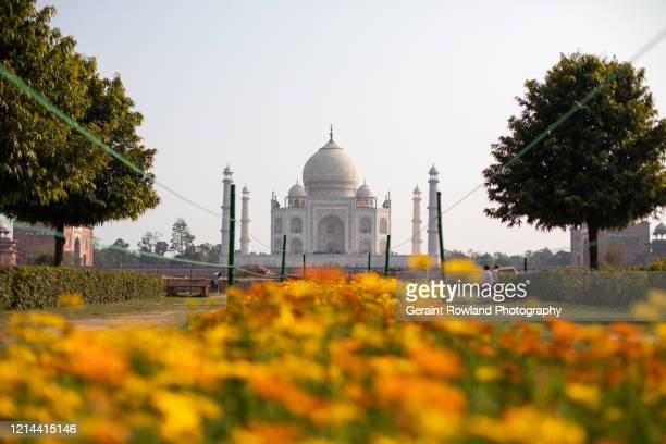 colours of india - celebrity death stock pictures, royalty-free photos & images