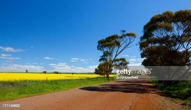 Colours Of Western Australia