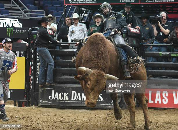Colten Jesse rides the bull Mason's Missouri Golden during the final round of the Professional Bullriders Mason Lowe Memorial on February 16 at...