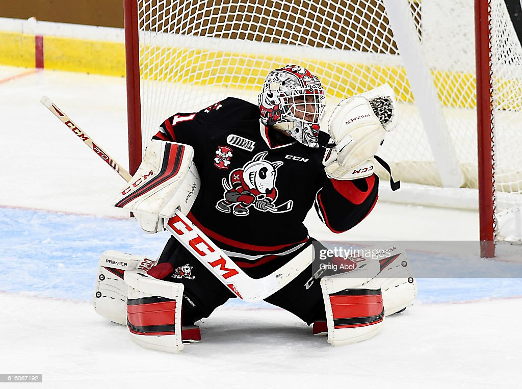 Colton Incze #31 of the Niagara IceDogs snags a shot against the Mississauga Steelheads during game action on October 21, 2016 at Hershey Centre in Mississauga, Ontario, Canada.