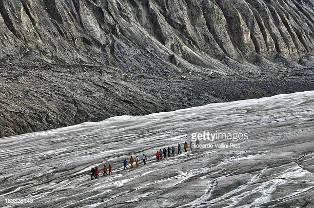 columbia icefield - columbia icefield stock pictures, royalty-free photos & images