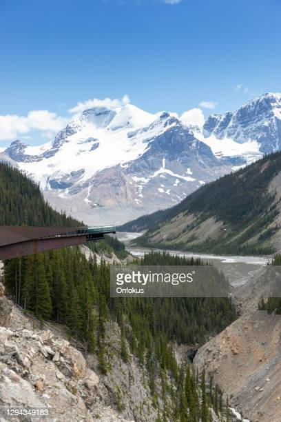columbia icefield  skywalk during summer in jasper national park - elevated walkway stock pictures, royalty-free photos & images