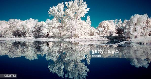 Columbia Lake in Infrared
